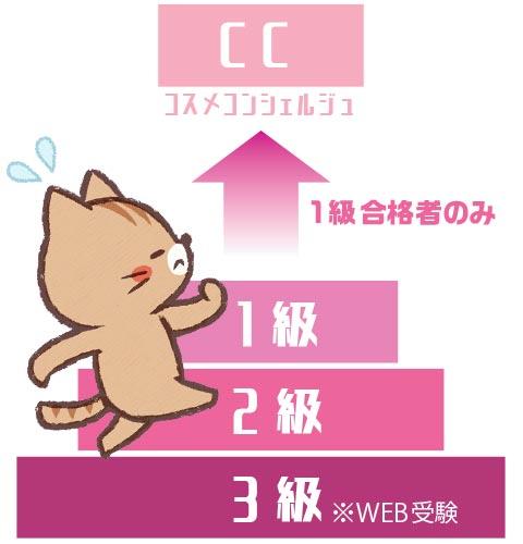 日本化粧品検定の各級のレベル